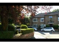 1 bedroom in Northcote Avenue, Ealing, W5 (#899445)