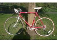 Daytona Super Sport - retro racing bike