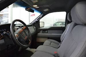 2012 Ford F-150 XLT | Power Options | Camera | Easy Financing Edmonton Edmonton Area image 5