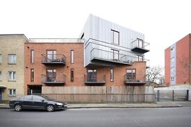 1 bedroom flat in Peckham!!!
