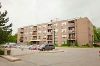1 Bdrm available at 45 Bredin Parkway, Orangeville