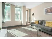 Modern One Bedroom Apartment -Available Now