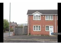 3 bedroom house in Adelphi Street, Sheffield, S6 (3 bed)