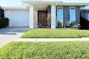 Modern with lots to offer - Priced for immediate sale Caloundra West Caloundra Area Preview