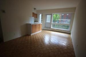 Spacious 3.5 available mid July - MT-ROYAL - PLATEAU - OUTREMONT