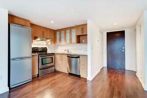 Spacious 1 Bedroom Loft- 705 sq ft, Downtown Montreal Living