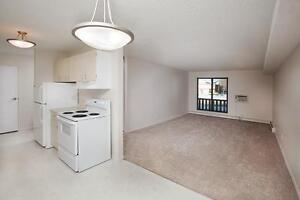 Bright, Clean & Pet Friendly 2-Bed Apartment In Lawson!