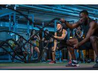 Gymbox Stratford Sales Guru