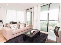+Sleek 2 bed 2 bath finished to a high standard w/ gym winter garden & roof terrace in Canada Water