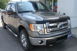 2014 Ford F-150 XLT Hard to find Long Box Peterborough Peterborough Area image 4