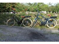 Electric Bike Conversion Kit (fitted)