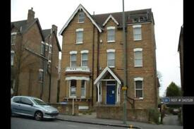 1 bedroom flat in Crystal Palace Park Road, London, SE26 (1 bed)