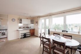Cosy and Spacious 8th floor 2 bedroom fully-furnished flat near Woking centre with great views!