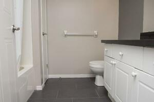 UWO Student Apts at St George/Mill St. in London! $644/person! London Ontario image 7