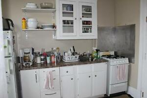 Beautiful One Bedroom Unit on BROCK St.- All Inclusive