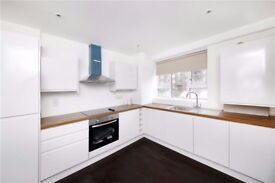 Newly renovated one bedroom apartment - Balcony - Five minutes walk to tube