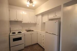 Renovated 1 bedroom available December - DOWNTOWN - ATWATER