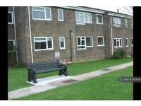 1 bedroom flat in St Marys Gardens, Beaminster, DT8 (1 bed)