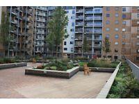 @ Seren Park Gardens - Stunning one bedroom apartment - Amazing Greenwich/SE3 location!