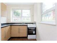**DSS ACCEPTED** LOVELY ONE BEDROOM SPACIOUS FLAT IG1