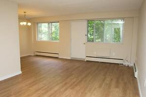 3 Bedroom Penthouse  (Thompson Rd. & Pond Mills Rd.)