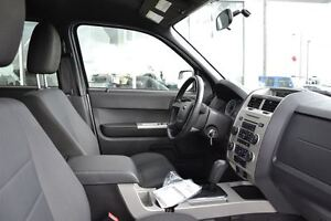 2011 Ford Escape XLT | Cruise Control | Lots of Cargo Space! | Edmonton Edmonton Area image 10