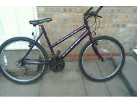 Ladies Raleigh max mountain bike