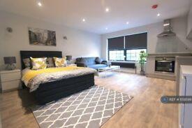 Studio flat in Alma Street, Luton, LU1 (#1159599)