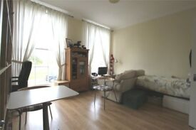 Particularly large studio flat with a separate kitchen.