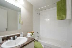 Amazing Updated One Bedroom - Downtown & Close to UWO London Ontario image 7