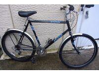 bike Raleigh Magnum 26inch wheels PLEASE READ ALL LISTING
