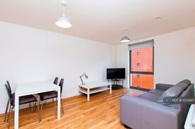 2 bedroom flat in Plaza Boulevard, Liverpool, L8 (2 bed) (#1059197)