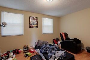 Ideal student rental! Great for groups of 3 and 4! Kitchener / Waterloo Kitchener Area image 6