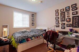 EVERYTHING YOU NEED AT 336 SPRUCE Kitchener / Waterloo Kitchener Area image 6