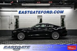 2017 Ford Mustang GT Perf Pack  Exec / -$1500.00 Cash -$1000 Cos