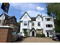 1 bedroom flat in Richmond, Richmond, TW10 (1 bed)