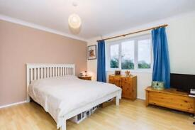 double and single rooms available (6 people in house max )