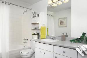 GRAND appartement à 1 chambre à louer à Hull : Gatineau, QC Gatineau Ottawa / Gatineau Area image 3