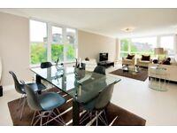 Interior designed three bedroom apartment in St Johns Wood