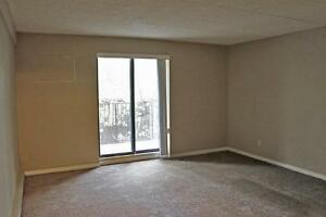Balcony, on-site laundry: 2 bedroom Windsor apartment for rent