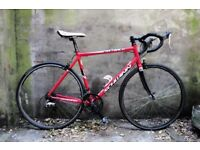 SCHWINN FASTBACK. 21.5 inch, 54.5 cm. Racer racing road bike, 16 speed