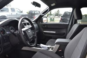 2011 Ford Escape XLT | Cruise Control | Lots of Cargo Space! | Edmonton Edmonton Area image 5