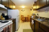 Southside 2Br with Easy Access to College