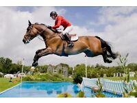 Admission tickets to the Hickstead Longines RHIS - 28th 29th 30th 31st July - Cheapest G'teed!