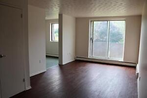 1 Bedroom Apartment for Rent in Quiet Area of West Owen Sound