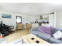 Bright modern 2 bedroom flat with nicely done, OPEN-PLAN kitchen, BALCONY, WOODEN FLOORS