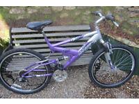 Bikes Raleigh chamonix