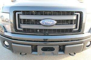 2014 Ford F-150 - Moose Jaw Regina Area image 9