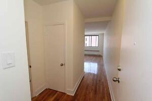 Newly-Renovated from A to Z! Great Studios in Great Location!