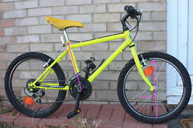 Children's Mountain Bicycle